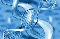 Datatag_DNA